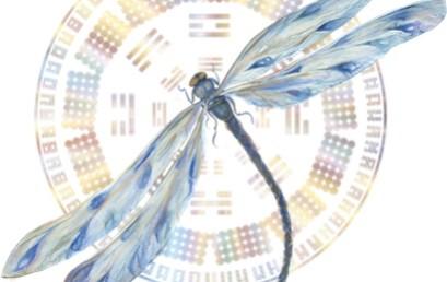 Introducere în Transmisiunea Cheile Genelor – ca o cale de eliberare
