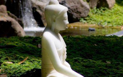 "OSHO Meditation Training ""In-Depth and Facilitating"""